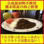 ショッピングカレー 予約受付中 お試し2袋 うちのカレー 熊本県産の肉と野菜 レトルト カレー 安心 安全 ご当地カレー ポーク 1家族2セットまで 送料無料 ポイント消化 高級