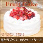 ホワイトデー 2021 お菓子 お返し 誕生日ケーキ バースデイケーキ お菓子 お返し スイーツ 送料無料 苺とラズベリーのショートケーキ 5号