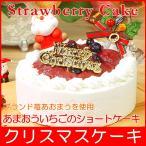 クリスマスケーキ 2021 予約 送料無料 あまおういちごのショートケーキ プレゼント お取り寄せ ギフト 早割り 早期割引
