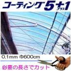 農PO スカイコート5UV 厚み0.100mm幅600cm長さ30m