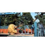 馬之助 HM-800 植木運搬用 アルミ架台(トラック用)