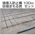 猪侵入防止柵  田畑まもる君 100mセット 線径5mm 亜鉛メッキ 高1.2m×幅2.0m 支柱、結束線付き sev