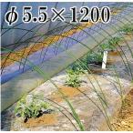 ニューセキスイポール φ5.5×1200mm (5.5×1.2) 100本