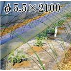 ニューセキスイポール φ5.5×2100mm 100本 (ダンポール)