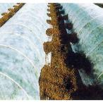 農業用べたがけ資材 不織布 ふしょくふ パオパオ90 210cm×50m 透光率90%(長尺物一部地域送料見積) (zs15)