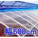 塗布無滴農POイースター 厚み0.1mm幅600cm長さ30m重さ約17.1kg