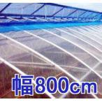 塗布無滴農POイースター 厚み0.1mm幅800cm長さ30m重さ約22.8kg