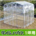 ビニール温室 ダイムハウス (ビニールハウス) 1坪用 第一ビニール DAIM 法人個人選択 (zs19)