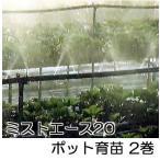 ミストエース20 ポット育苗 100m巻×2巻 超微細噴霧潅水 住化農業資材