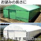 農POフィルム ハクリョク 厚み0.15mm×幅150cm×長さ30m 重さ6.0kg (長さ指定OK) 両面仕様 (白・緑) 農業用格納庫 (2枚組) 三菱ケミカルアグリドリーム