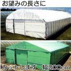 農POフィルム ハクリョク 厚み0.15mm×幅200cm×長さ30m 重さ9.0kg  両面仕様 (白・緑) 農業用格納庫 2枚組 三菱ケミカルアグリドリーム