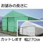 農POフィルム ハクリョク 厚み0.15mm×幅270cm×長さ30m 重さ約12.0kg 30m価格 両面仕様(白・緑) 農業用格納庫 三菱ケミカルアグリドリーム