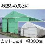 農POフィルム ハクリョク 厚み0.15mm×幅300cm×長さ30m 重さ約15.0kg 30m価格 両面仕様(白・緑) 農業用格納庫 三菱ケミカルアグリドリーム