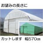 農POフィルム ハクリョク 厚み0.15mm×幅570cm×長さ30m 重さ約26.2kg 30kg価格 両面仕様 (白・緑) 農業用格納庫 倉庫 三菱ケミカルアグリドリーム