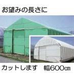 農POフィルム ハクリョク 厚み0.15mm×幅600cm×長さ30m 重さ約27.5kg 30m価格 両面仕様 (白・緑) 農業用格納庫 倉庫 三菱ケミカルアグリドリーム