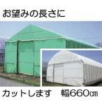 農POフィルム ハクリョク 厚み0.15mm×幅660cm×長さ30m 重さ約30.3kg 30m価格 両面仕様 (白・緑) 農業用格納庫 倉庫 三菱ケミカルアグリドリーム