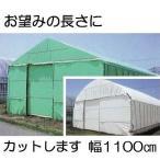農POフィルム ハクリョク 厚み0.15mm×幅1100cm×長さ30m 重さ約50.5kg 30m価格 両面仕様 (白・緑) 農業用格納庫 倉庫 三菱ケミカルアグリドリーム