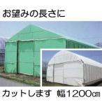 農POフィルム ハクリョク 厚み0.15mm×幅1200cm×長さ30m 重さ約55.1kg 30m価格 両面仕様 (白・緑) 農業用格納庫 倉庫 三菱ケミカルアグリドリーム
