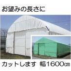 農POフィルム ハクリョク 厚み0.15mm×幅1600cm×長さ30m 重さ約73.4kg 30m価格 両面仕様(白・緑) 農業用格納庫 倉庫 三菱ケミカルアグリドリーム