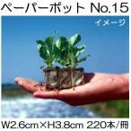 ニッテン ペーパーポット No.15 220本付200冊 レタス、ネギ、ニラ、スイートコーンに 水稲育苗箱適用 日本甜菜製糖