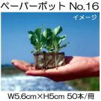 ペーパーポット No.16 50本付300冊 ブロッコリー、そらまめ、カーネーション、メロンに