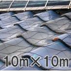 屋根瓦飛散防止ネット 100号 10m×10m 48畳 (防災 台風 強風 突風 竜巻 防風 対策)画像