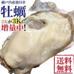 カキ かき 牡蠣 兵庫播磨灘産 播磨カキ3kg前後 鍋 お試し海鮮 魚介 BBQ バーベキュー 具材