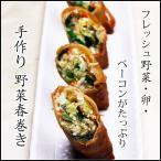 手作り 台北 野菜春巻き(簡易包装 生冷凍4本入り)