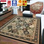 カーペット 4畳 ラグ 絨毯 じゅうたん ラグマット ベルギー製 ボタニカル柄 おしゃれ 【ボタニカル 2665】 約4畳 200x290cm