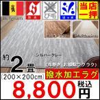 Yahoo!大漁カーペット ヤフーショップカーペット 2畳 ラグ 絨毯 じゅうたん 新商品 ベルギー製  防炎 撥水 ナチュラル  安い 激安 品名 ハイウェイ サイズ 200×200cm