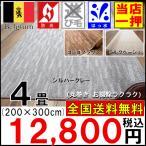 Yahoo!大漁カーペット ヤフーショップカーペット 4畳 ラグ 絨毯 じゅうたん 新商品 ベルギー製  防炎 撥水 ナチュラル  安い 激安 品名 ハイウェイ サイズ 200×300cm