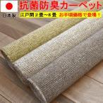カーペット 6畳 絨毯 じゅうたん 安い 江戸間6帖カーペット ラフィーレ