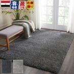 防音 ラグ 140×200cm  防音特級  LL-35  抗菌 防臭 絨毯 カーペット 【品名 サーボチェック】