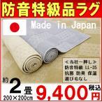 防音 ラグ 200×200cm  防音特級  LL-35  抗菌 防臭 絨毯 カーペット 【品名 サーボチェック】