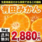 有田みかん 5kg 送料無料 2S〜2Lサイズ