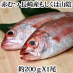 赤むつ(のどぐろ・ノドグロ)長崎 対馬産もしくは、山陰産 200g