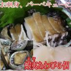 蝦夷(えぞ)あわび(養殖)1個約50gX5個アワビの捌き方付き