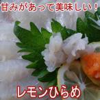 レモンひらめ800g、大分県産(ヒラメ)(平目)5〜6人前