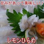 レモンひらめ600g、大分県産(ヒラメ)(平目)3〜4人前