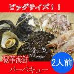 豪華海鮮バーベキュービッグサイズセット(アワビ2個・(夏場は、岩牡蠣2個、冬場は冬牡蠣2個)・サザエ2個・ホタテ2個・エビ2尾(解凍))