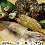 海鮮バーベキューBセット(夏は岩牡蠣3個、冬は牡蠣(牡蠣のない夏場はホタテ3個に代替え)・サザエ3個・有頭エビ(解凍)3個・真いかの一夜干し(解凍)1枚)