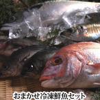 店長おまかせ鮮魚セット!瀬戸内海産の魚をメインにセットにしています。下処理後、真空に近い状態にパック、レシピ付き