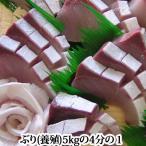 ぶり 約5kgの4分の1 ( 養殖 鹿児島産もしくは瀬戸内産)( ぶり 鰤 )
