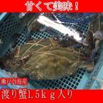 ワタリガニ オス、メス混在( 渡り蟹 ガザミ )約1.5kg分(3〜5はい) 瀬戸内海産 活き締め