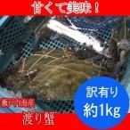 訳有り ワタリガニ オス、メス混在、爪折れ、脚取れ( 渡り蟹 ガザミ  )約1kg分 瀬戸内海産 活き締め