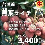 黒葉ライチ1kg 台湾産 期間限定 数量限定