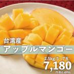 お中元 御中元 ギフト アップルマンゴー2.5kg 台湾産 期間限定