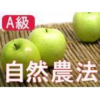 (A級品)竹嶋有機農園の自然農法りんご 王林 約5kg