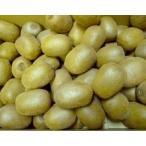 石綿さんの無農薬・無肥料 キウイ  約5kg(Sまたは2Sサイズ)※55〜70個前 (産地直送の他商品との同梱不可)
