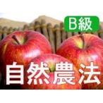 りんご お取り寄せ フルーツ 訳あり (B級品) 竹嶋有機